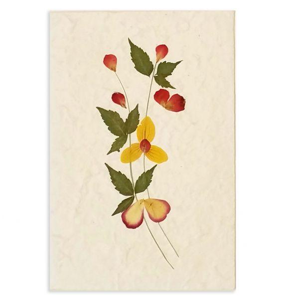 SAA-Grusskarte mit echten Blüten | Motiv Nr. 7