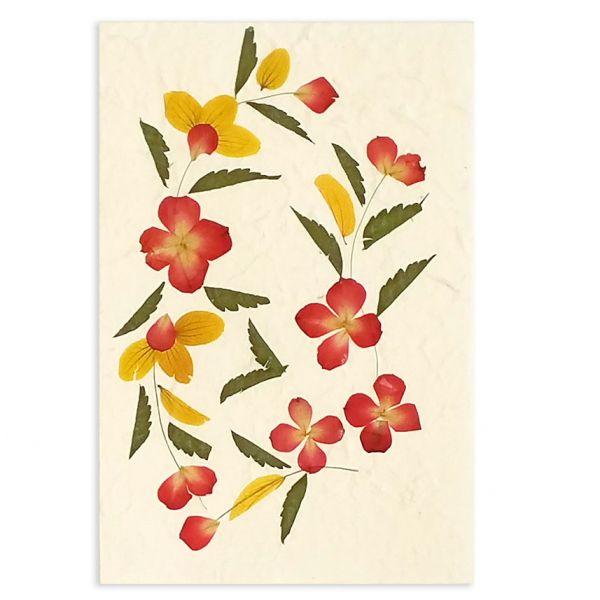 SAA-Grusskarte mit echten Blüten | Motiv Nr. 25