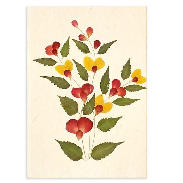 SAA-Grusskarte mit echten Blüten | Motiv Nr. 56