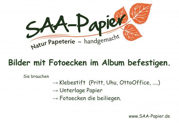 SAA-Papier-Einleitung