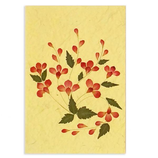 SAA-Grusskarte mit echten Blüten | Motiv Nr. 5