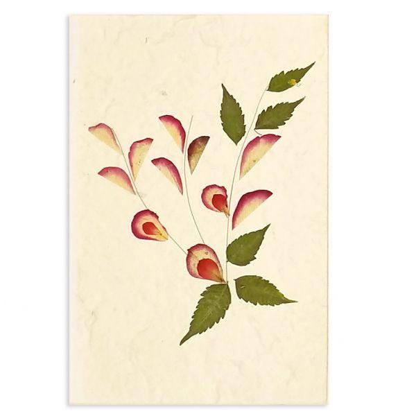 SAA-Grusskarte mit echten Blüten | Motiv Nr.12