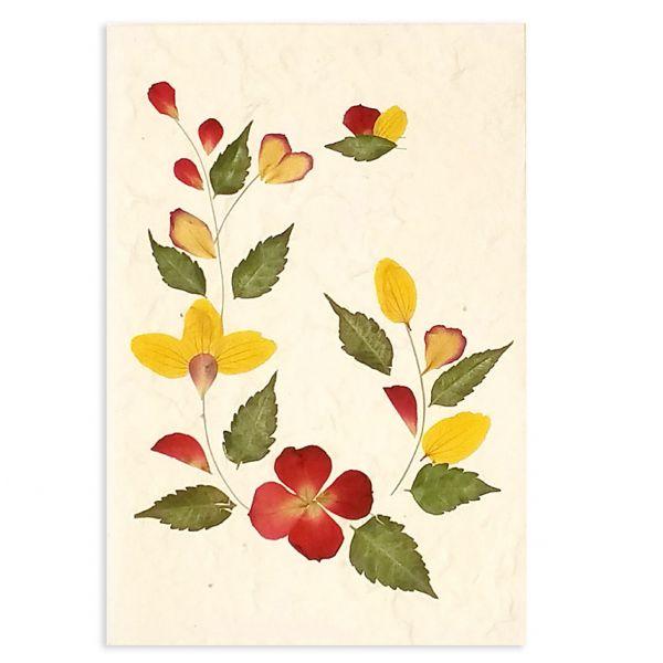 SAA-Grusskarte mit echten Blüten | Motiv Nr. 59