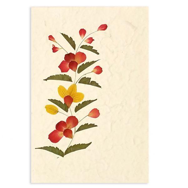 SAA-Grusskarte mit echten Blüten | Motiv Nr. 22