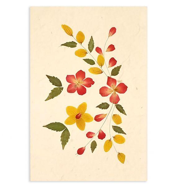 SAA-Grusskarte mit echten Blüten | Motiv Nr. 44