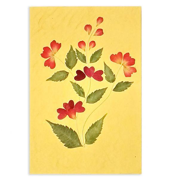 SAA-Grusskarte mit echten Blüten | Motiv Nr. 55