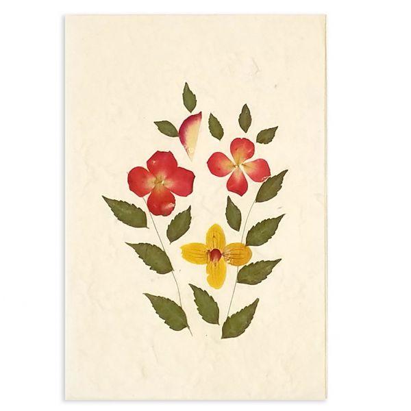 SAA-Grusskarte mit echten Blüten | Motiv Nr.14