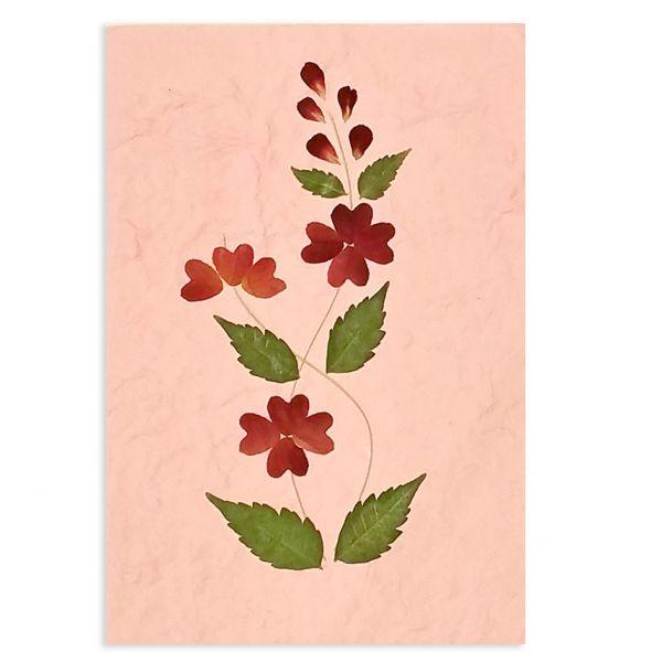 SAA-Grusskarte mit echten Blüten | Motiv Nr. 39