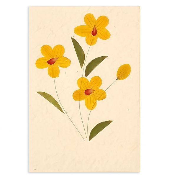 SAA-Grusskarte mit echten Blüten | Motiv Nr. 47