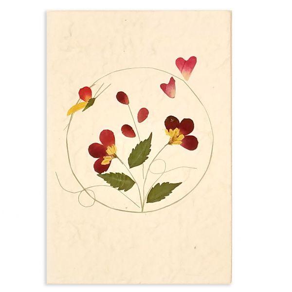 SAA-Grusskarte mit echten Blüten | Motiv Nr. 49