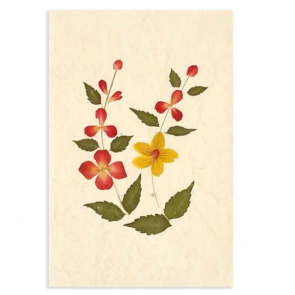 SAA-Grusskarte mit echten Blüten | Motiv Nr. 21
