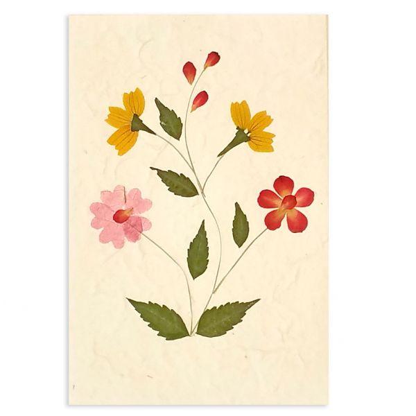 SAA-Grusskarte mit echten Blüten | Motiv Nr. 23