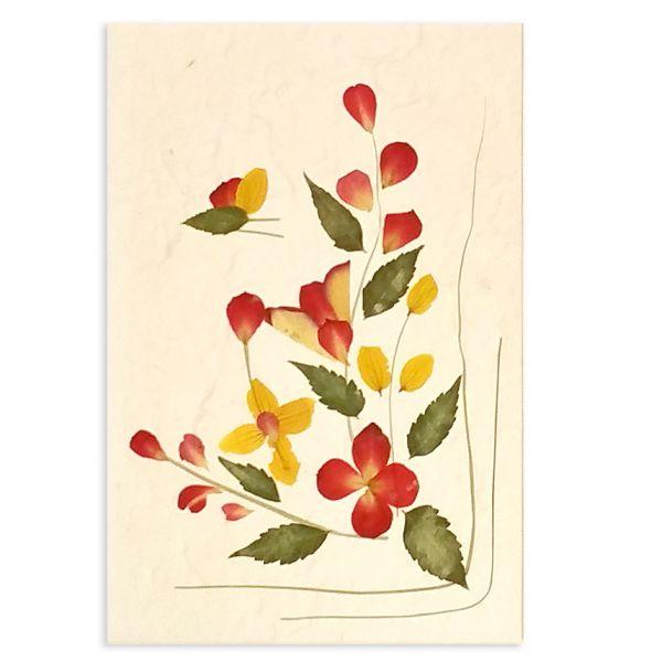 SAA-Grusskarte mit echten Blüten | Motiv Nr. 37