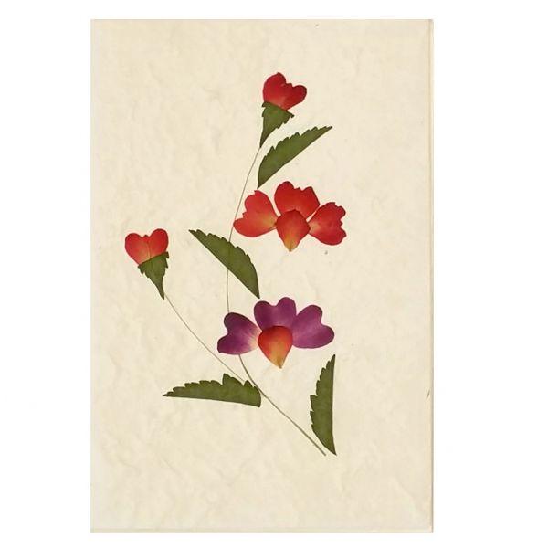 SAA-Grusskarte mit echten Blüten | Motiv Nr. 6
