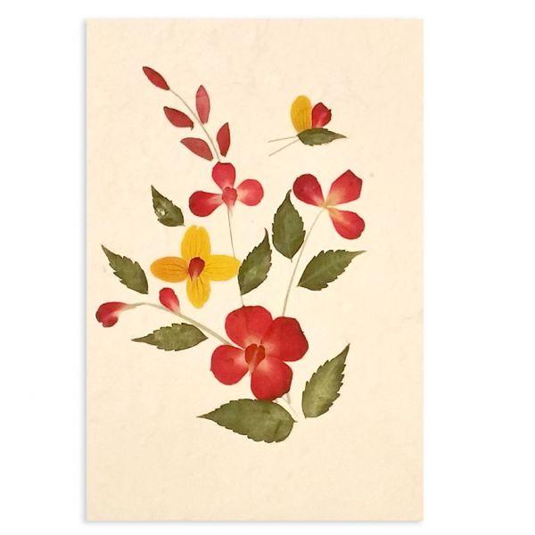 SAA-Grusskarte mit echten Blüten | Motiv Nr. 38