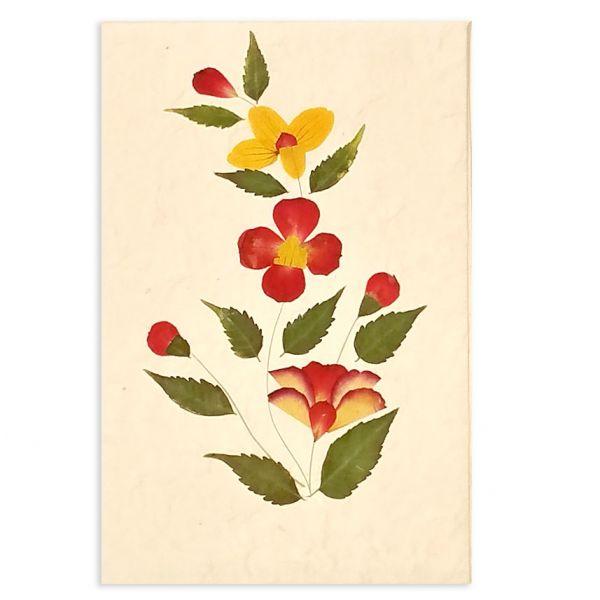 SAA-Grusskarte mit echten Blüten | Motiv Nr. 40