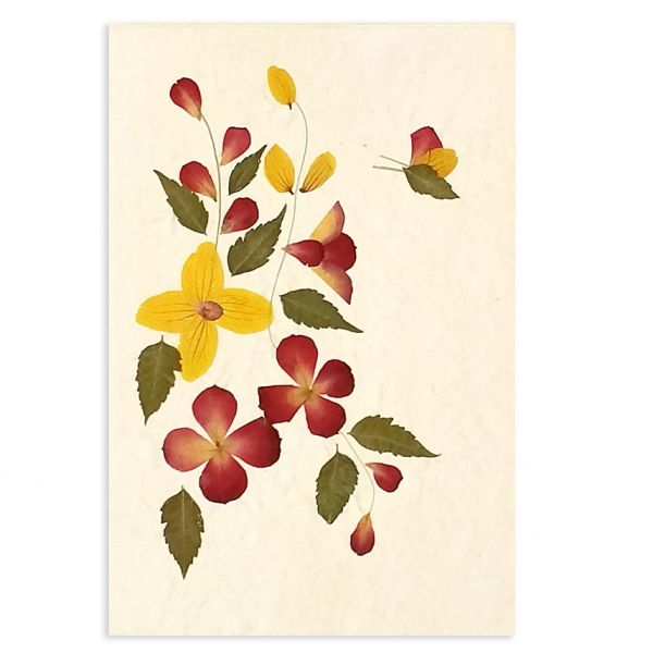 SAA-Grusskarte mit echten Blüten | Motiv Nr. 28