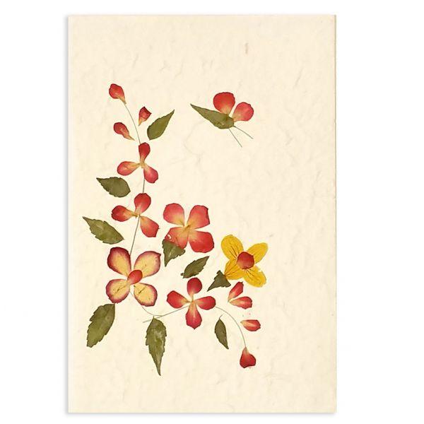 SAA-Grusskarte mit echten Blüten | Motiv Nr. 64