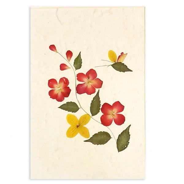 SAA-Grusskarte mit echten Blüten | Motiv Nr.19