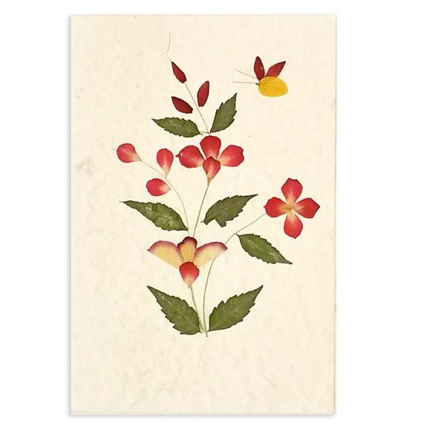 SAA-Grusskarte mit echten Blüten | Motiv Nr.16