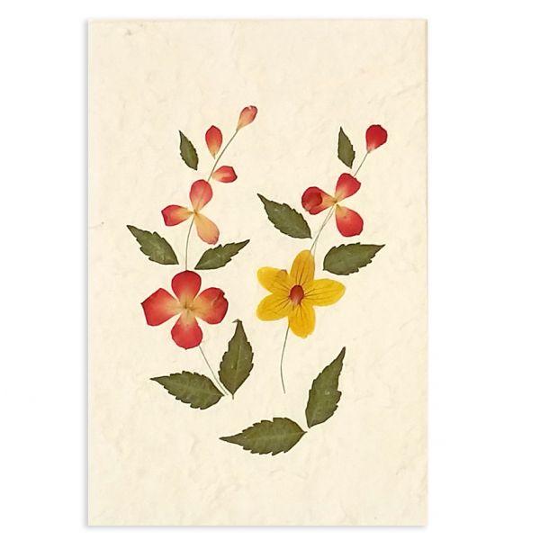 SAA-Grusskarte mit echten Blüten | Motiv Nr. 31