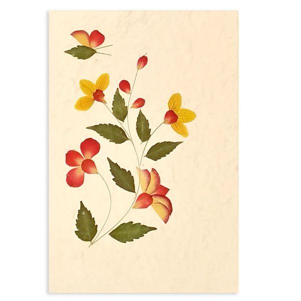SAA-Grusskarte mit echten Blüten | Motiv Nr. 42