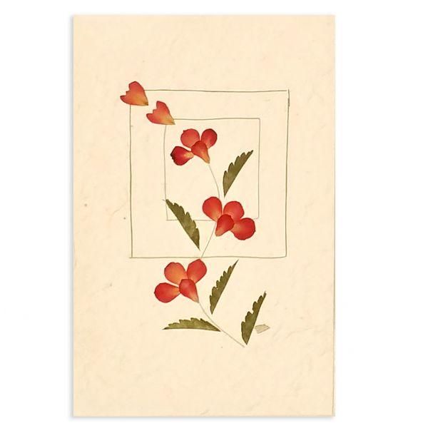 SAA-Grusskarte mit echten Blüten | Motiv Nr. 41