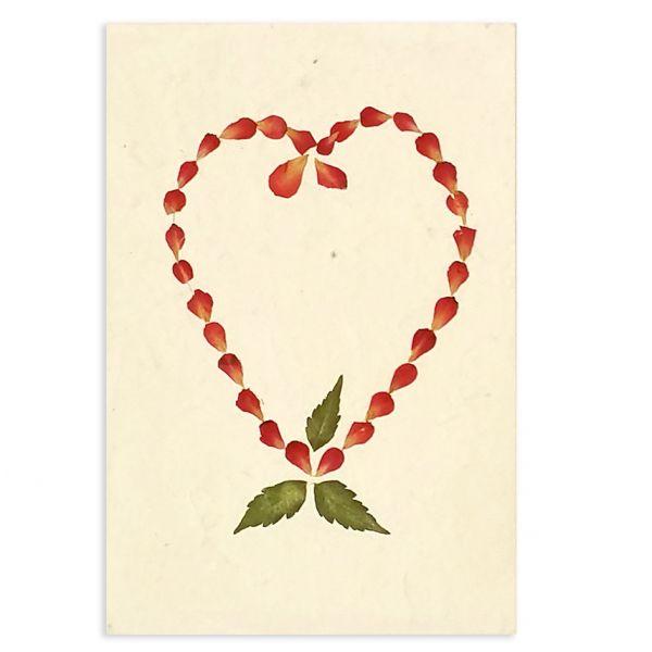 SAA-Grusskarte mit echten Blüten | Motiv Nr. 52