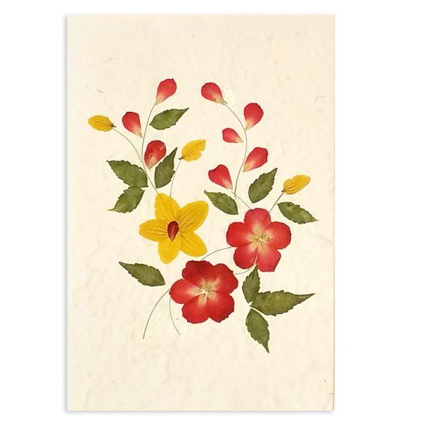 SAA-Grusskarte mit echten Blüten | Motiv Nr. 57