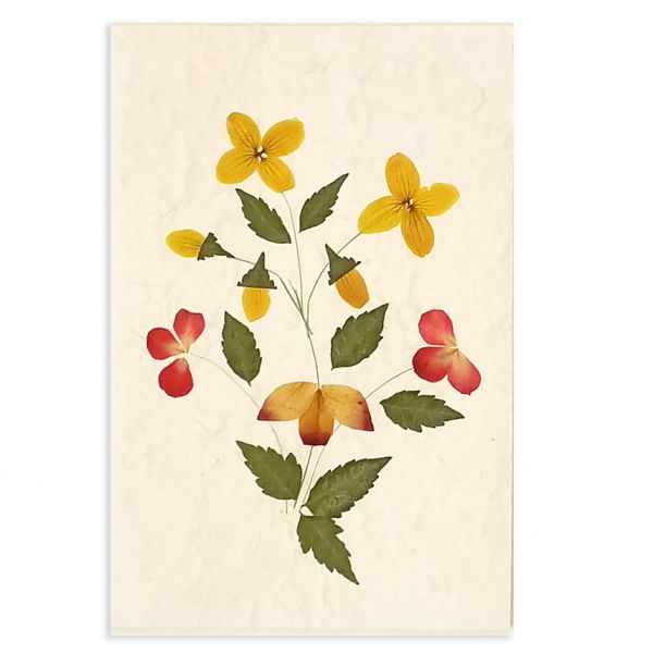 SAA-Grusskarte mit echten Blüten | Motiv Nr.11